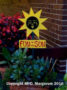 fun-in-the-sun-web-10-22-16